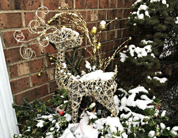 Christmas Planters Diy.Diy Reindeer Christmas Planters Debbee S Buzz