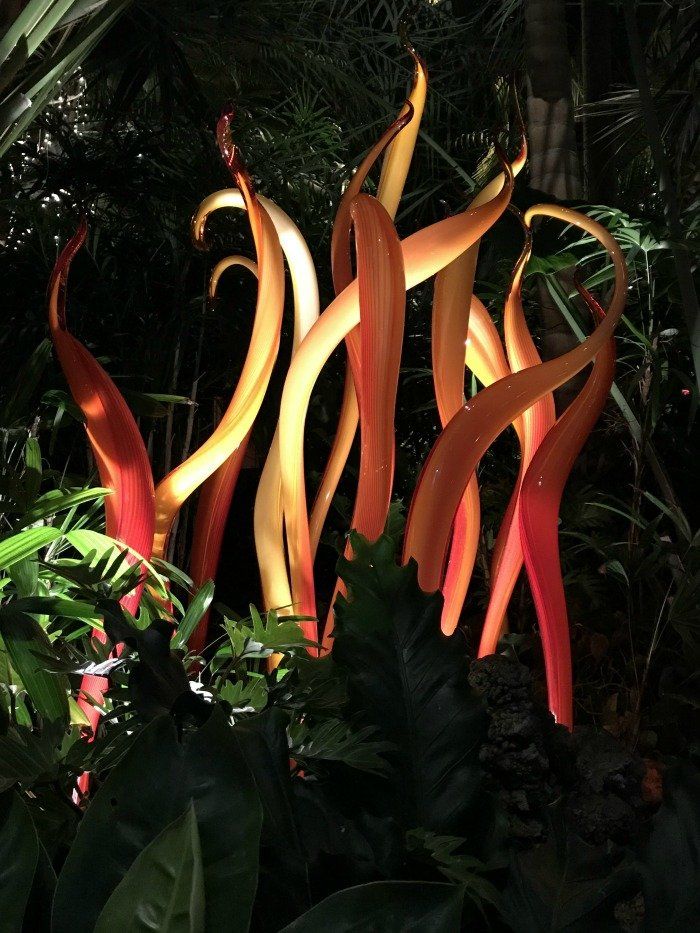 Phipps-Chihuly-flames