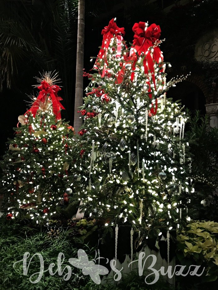 Phipps-Christmas-tree-trio