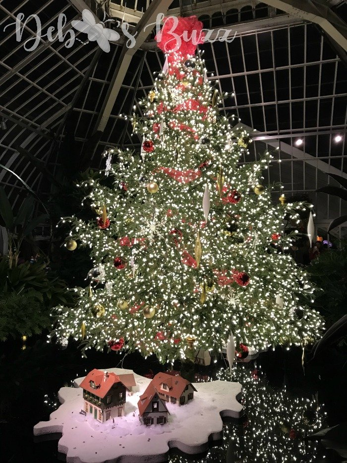 Phipps-winter-Christmas-tree
