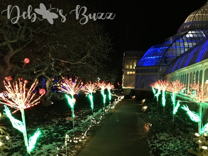 Phipps-winter-outdoor-lighted-path