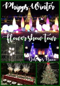 Phipps-winter-flower-tour-collage