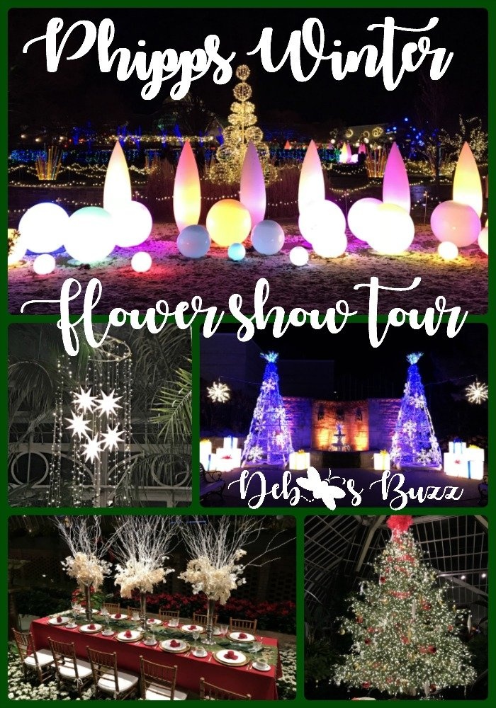 making-merry-Phipps-winter-flower-tour-collage