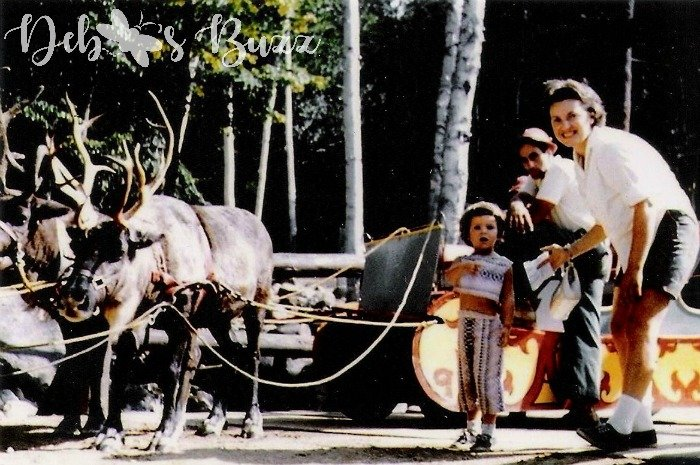 north-pole-Reindeer-sleigh-elmer-elf-wreath