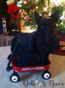 Scottie-Christmas-wagon