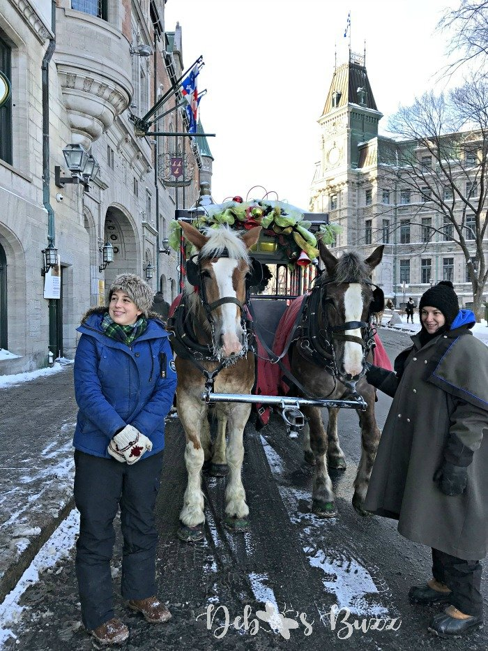 Upper-Quebec-City-horses