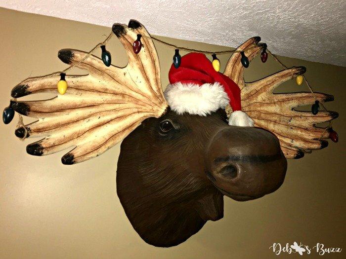 apres-ski-moose