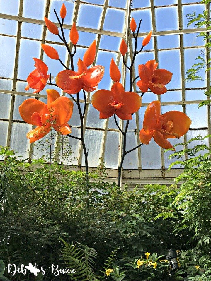 phipps-spring-flower-show-glass-flowers