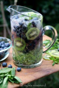 peacock-theme-menu-blueberry-kiwi-mojito
