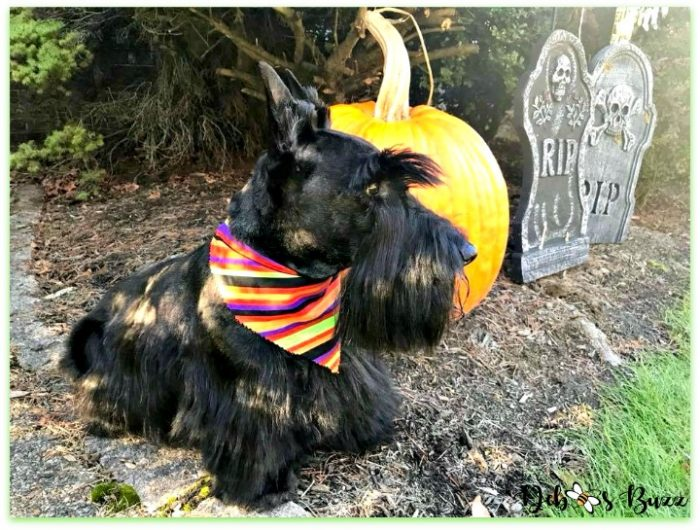 Halloween-green-ghost-Scottie-dog