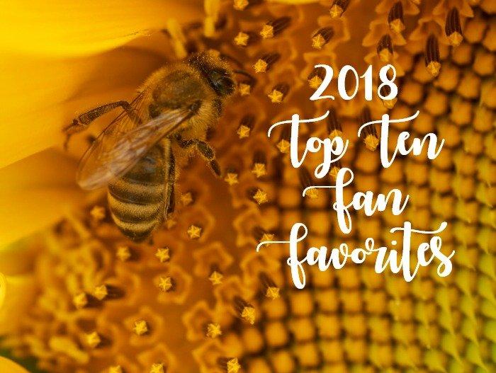 Top Ten 2018 Fan Favorite Posts