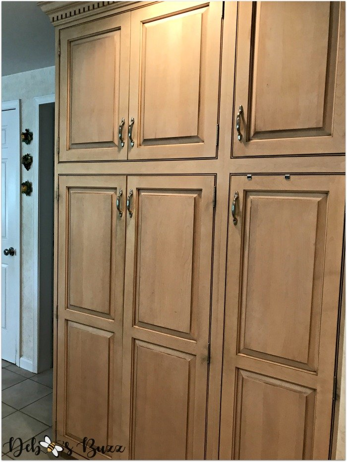 remodeled-kitchen-design-layout-organization-pantry-cabinets