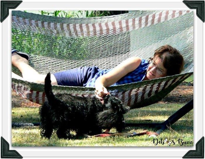 Scottie-dog-fuzzy-funny-Valentine-hammock-frame