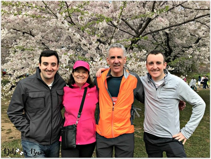 cherry-blossom-race-family