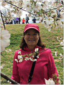 debbee-cherry-blossom