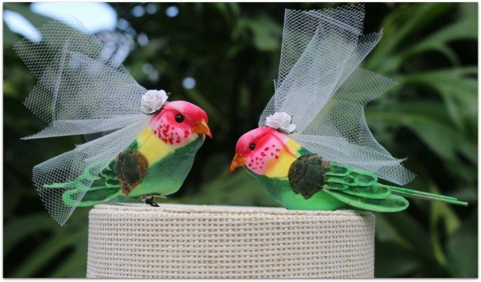 exotic-bird-wedding-cake-toppers