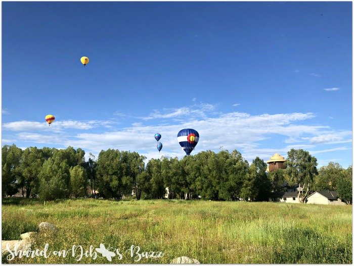 Steamboat-Springs-Colorado-Hot-Air-Balloon-Festival-field