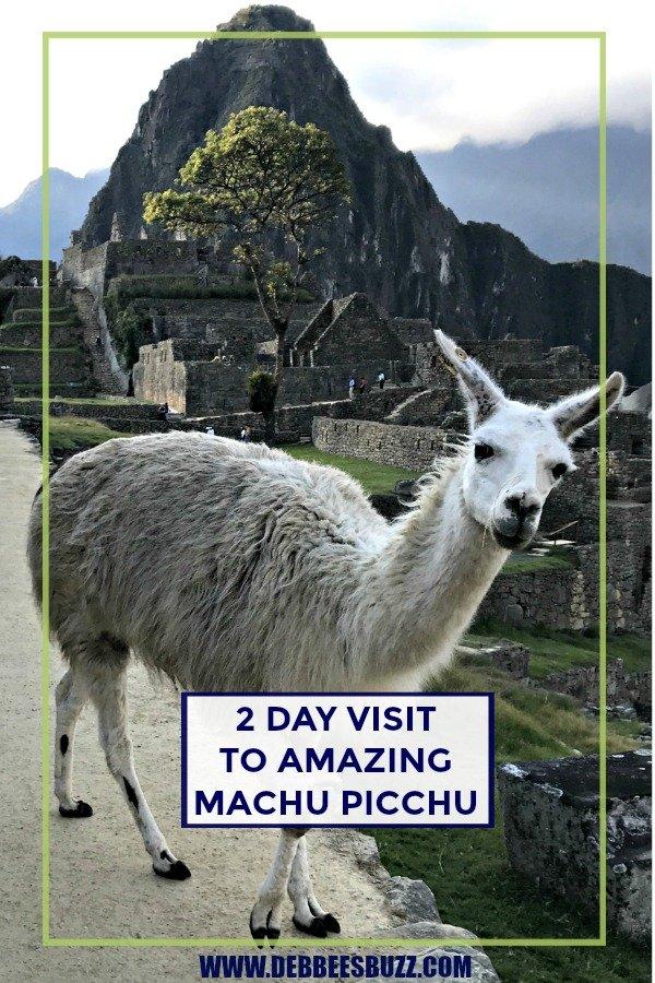 Peru-travel-Machu-Picchu-llama-pin
