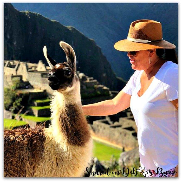 Peru-Machu-Picchu-llama-spotted