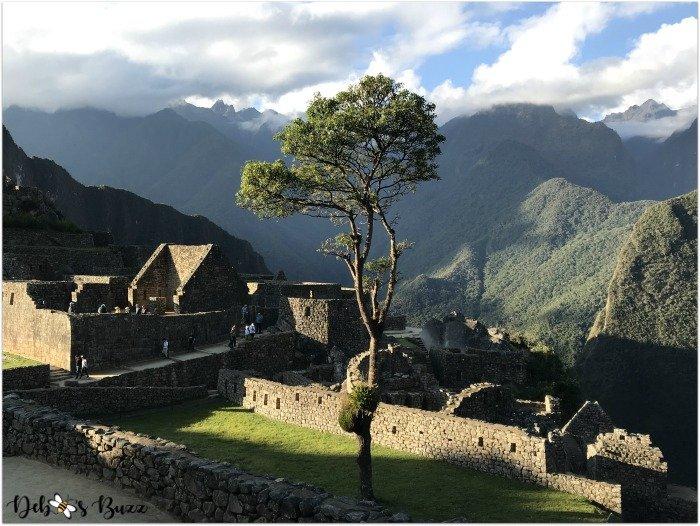 peru-machu-picchu-day2-tree-ruins