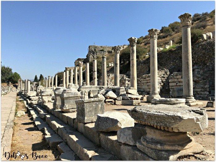 Ephesus-Turkey-algora-column-way