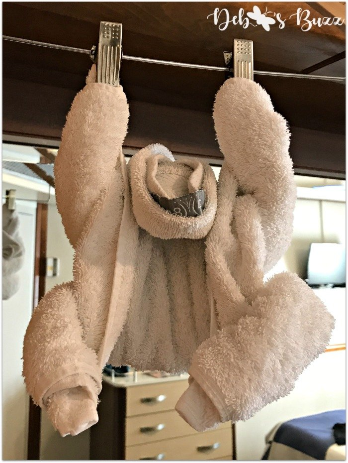Windstar-monkey-towel-fold