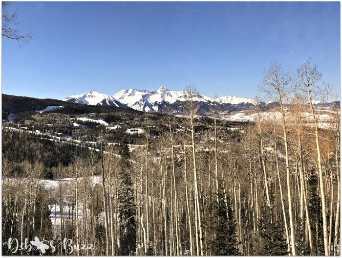 ski-vacation-telluride-colorado-aspen-trees