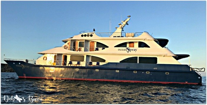 Galapagos-Islands-cruise-Ocean-Spray