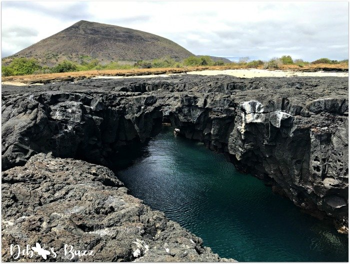 Galapagos-vacation-Egas-Port-tide-pool