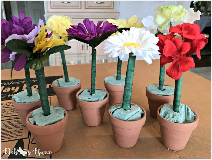 potted-flower-pens