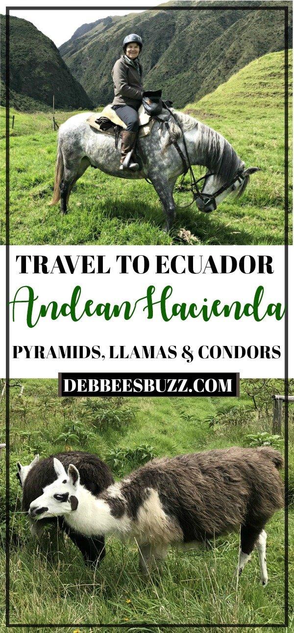 travel-ecuador-Andes-Condors-hacienda-vacation-llama-horseback-riding