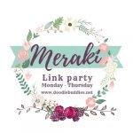 meraki link party