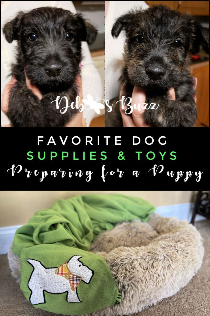favorite-dog-supplies-toys-puppy-preparations