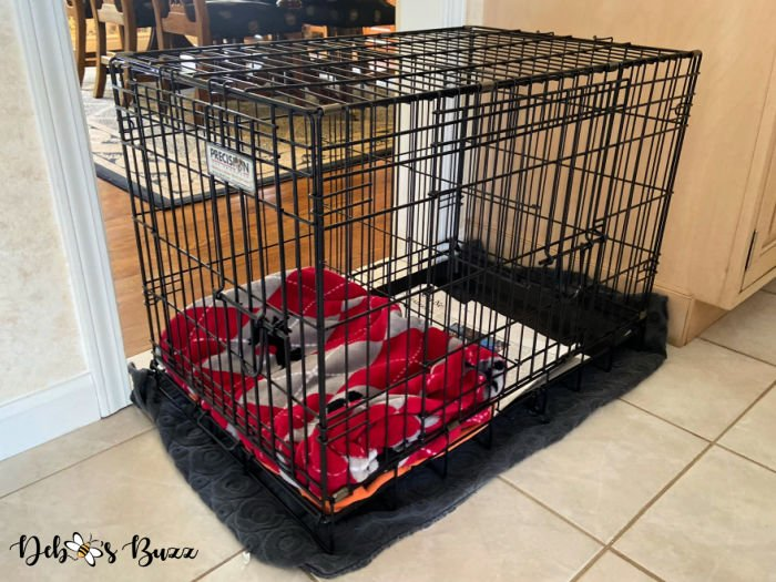 puppy-preparations-crate