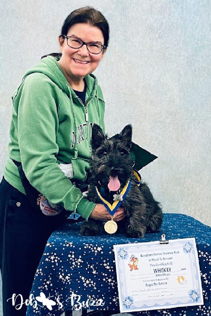 AKC-STAR-puppy-award-Scottie-dog