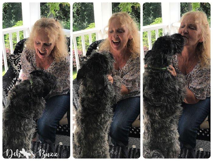 Scottie-puppy-kiss
