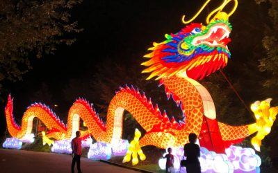 Zoo Asian Lantern Festival Illuminates Wildlife