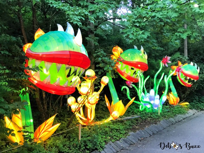 Asian-Lantern-Festival-Pittsburgh-Zoo-piranha-plants
