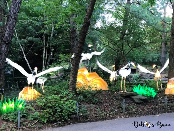 Asian-Lantern-Fesitval-Pittsburgh-Zoo-crane-display