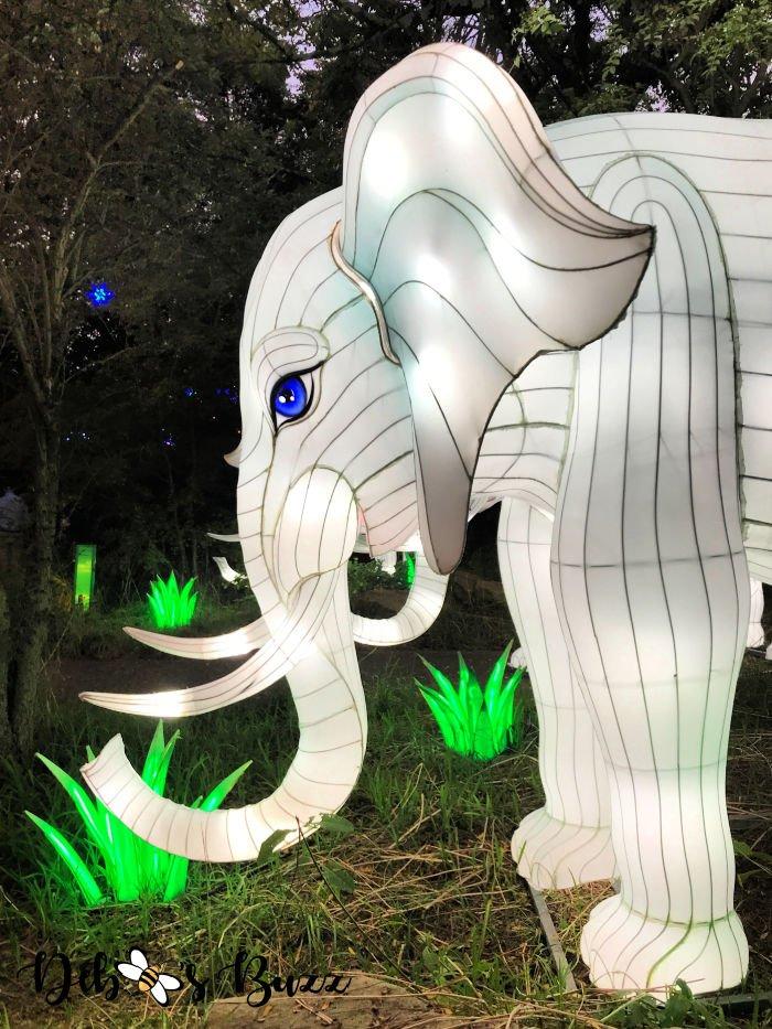 Asian-Lantern-Festival-Pittsburgh-Zoo-elephant