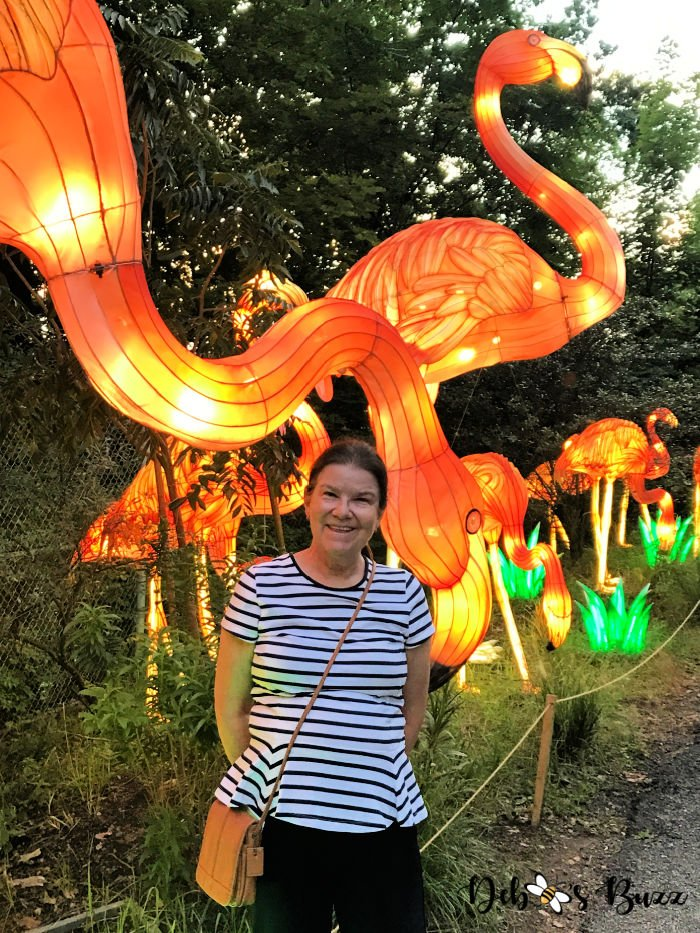 Asian-Lantern-Festival-Pittsburgh-Zoo-flamingos