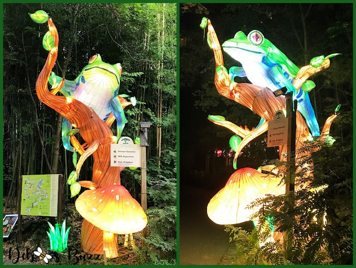 Asian-Lantern-Festival-Pittsburgh-Zoo-frog-signs