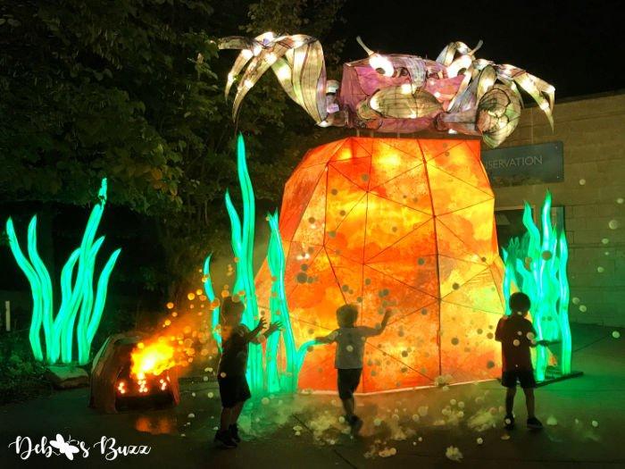 Pittsburgh-Aquarium-crab-lantern-bubble-machine