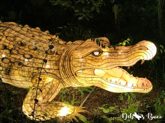 Pittsburgh-Zoo-Asian-alligator-lantern