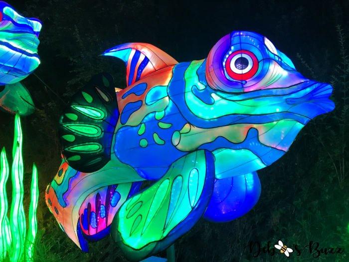 Pittsburgh-Zoo-Asian-colorful-fish-lantern