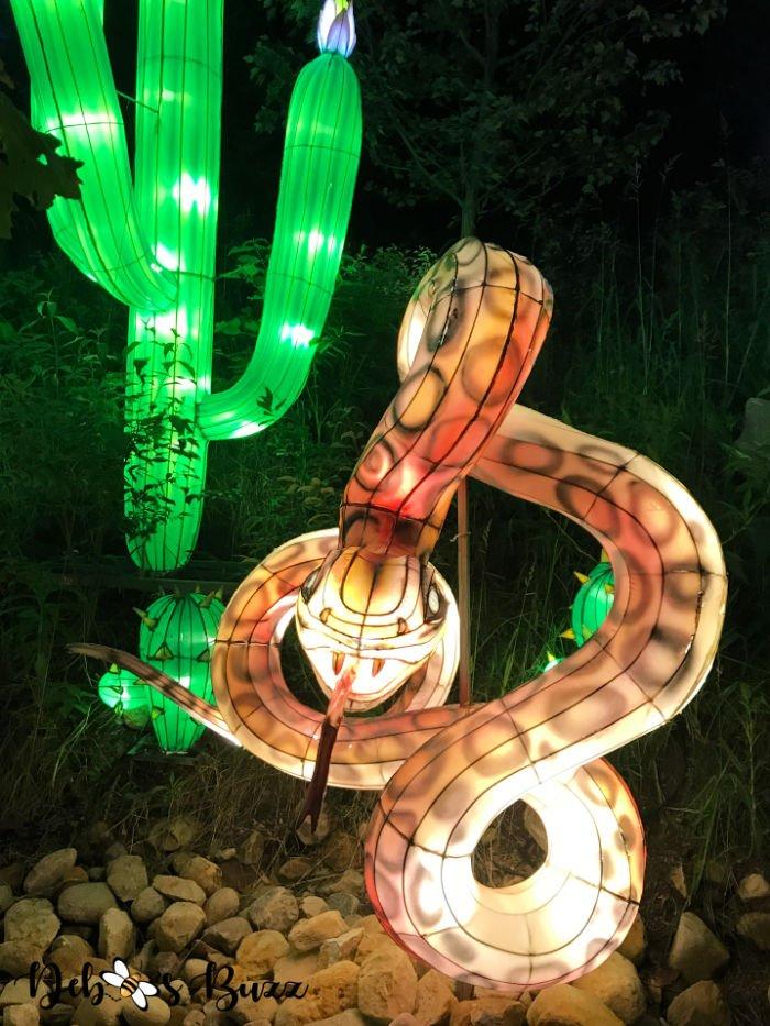Pittsburgh-Zoo-Asian-desert-snake