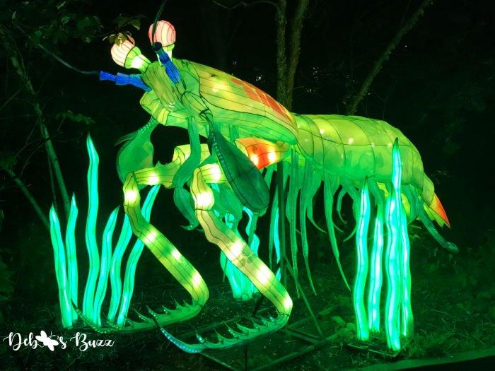 Pittsburgh-Zoo-Asian-lantern