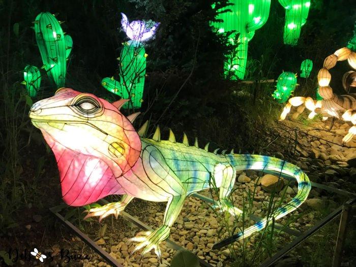 Pittsburgh-Zoo-Asian-lizard-lantern