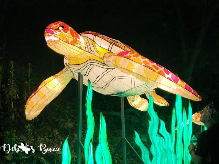 Pittsburgh-Zoo-Asian-turtle-lantern
